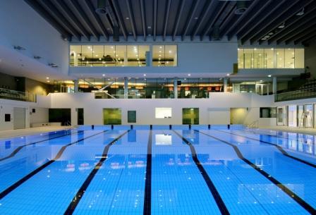 Hout beton schutting zwembad drieburcht tilburg