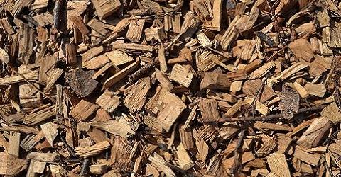 Subsidies biomassa gaan volgens wetenschappers in rook op