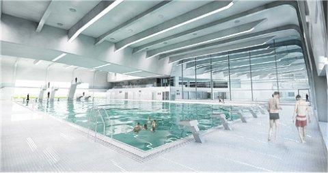 Hout beton schutting: zwembad hofbad