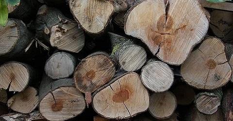 Snoeihout niet meer als milieuvriendelijke brandstof