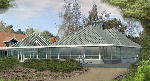 Nieuw zwembad Droompark De Zanding geopend