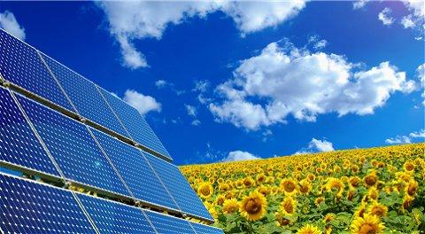 60.000 zonnepanelen in Veenendaal