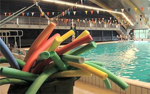 Zwembad Het Zuiderpark.Zuiderpark Zwembad Bestaat 15 Jaar Zwemrekreatie
